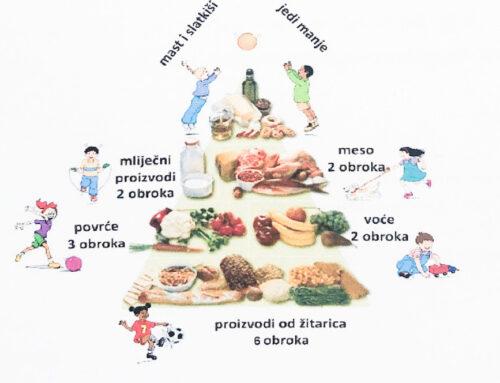 Izještaj o ispitivanju energetske i prehrambene vrijednosti obroka u dječjem vrtiću Planet mašte